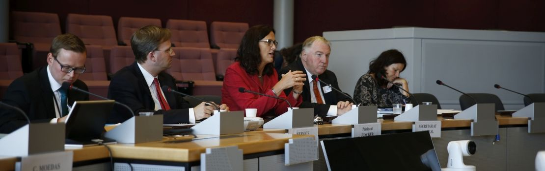Ausschuss I zu Anhörung bei EU-Kommissarin