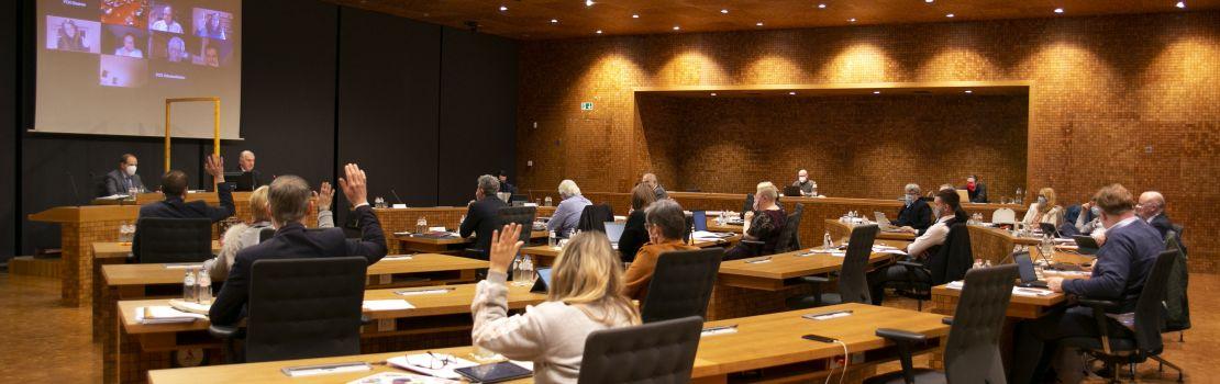 Die Abstimmungsergebnisse der Plenarsitzung vom 25. Januar 2021