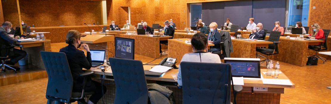 Die Abstimmungsergebnisse der Plenarsitzung vom 17. Mai 2021