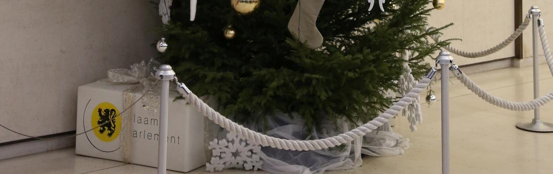 Weihnachtsbaum als Geschenk aus der DG